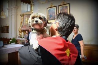 Pippi in Vegan Church